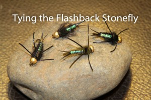 Tying the Flashback Stonefly