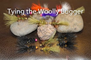 Tying the Woolly Bugger